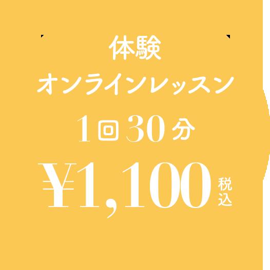 体験オンラインレッスン1回30分¥1,100(税込)